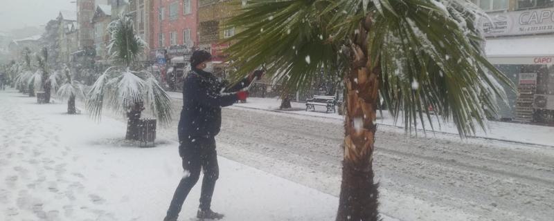 Ağaçlarda kar temizleme çalışmaları yapılıyor