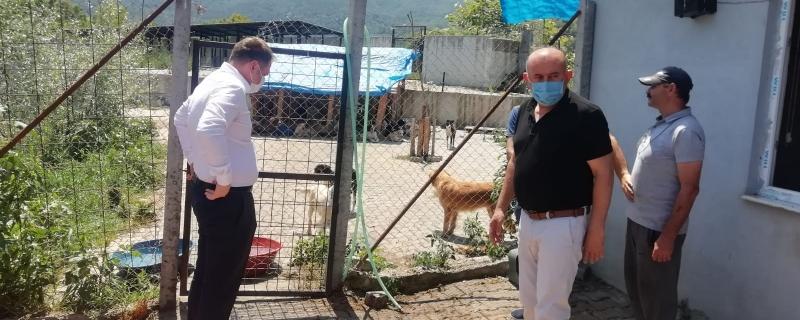 Başkanımız ve Kaymakamımız Sokak Hayvanları Rehabilitasyon Merkezi nde